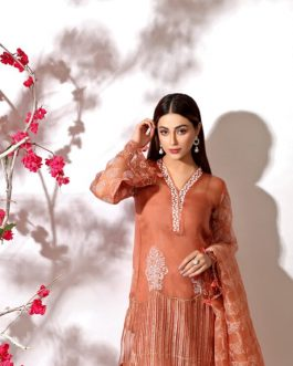 AINAR by Shurooq Stitched Embroidered 3 Piece Suit