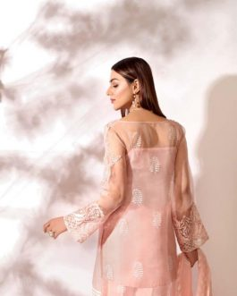 AGNEIS by Shurooq Stitched Embroidered 3 Piece Suit
